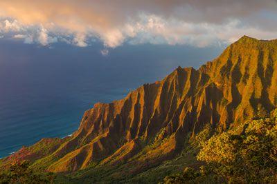 Topics in Emergency Medicine - Kauai, Hawaii - March 25-29, 2019