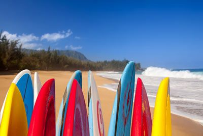 Topics in Emergency Medicine - Kauai, Hawaii - March 25-29, 2019