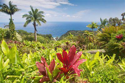Update in Critical Care - Maui, Hawaii - March 11-15, 2019