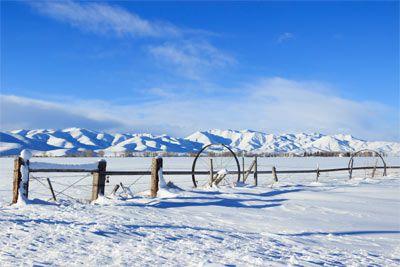 Relevant Topics in Emergency Medicine - Sun Valley, Idaho - February